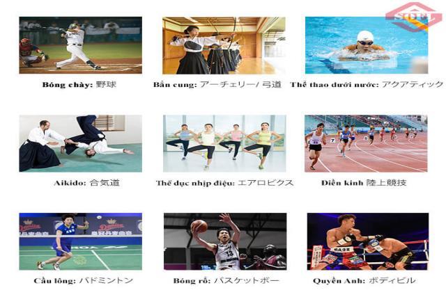 Học từ vựng tiếng Nhật về các môn thể thao